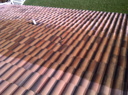 Tile Roof Pressure Cleaning Power Washing Shingle Roofs